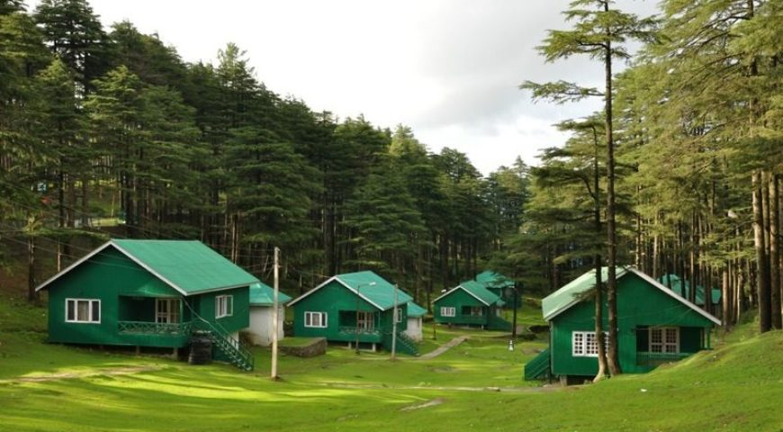 What Makes a Hotel/Resort or Campsite in Patnitop the Best?